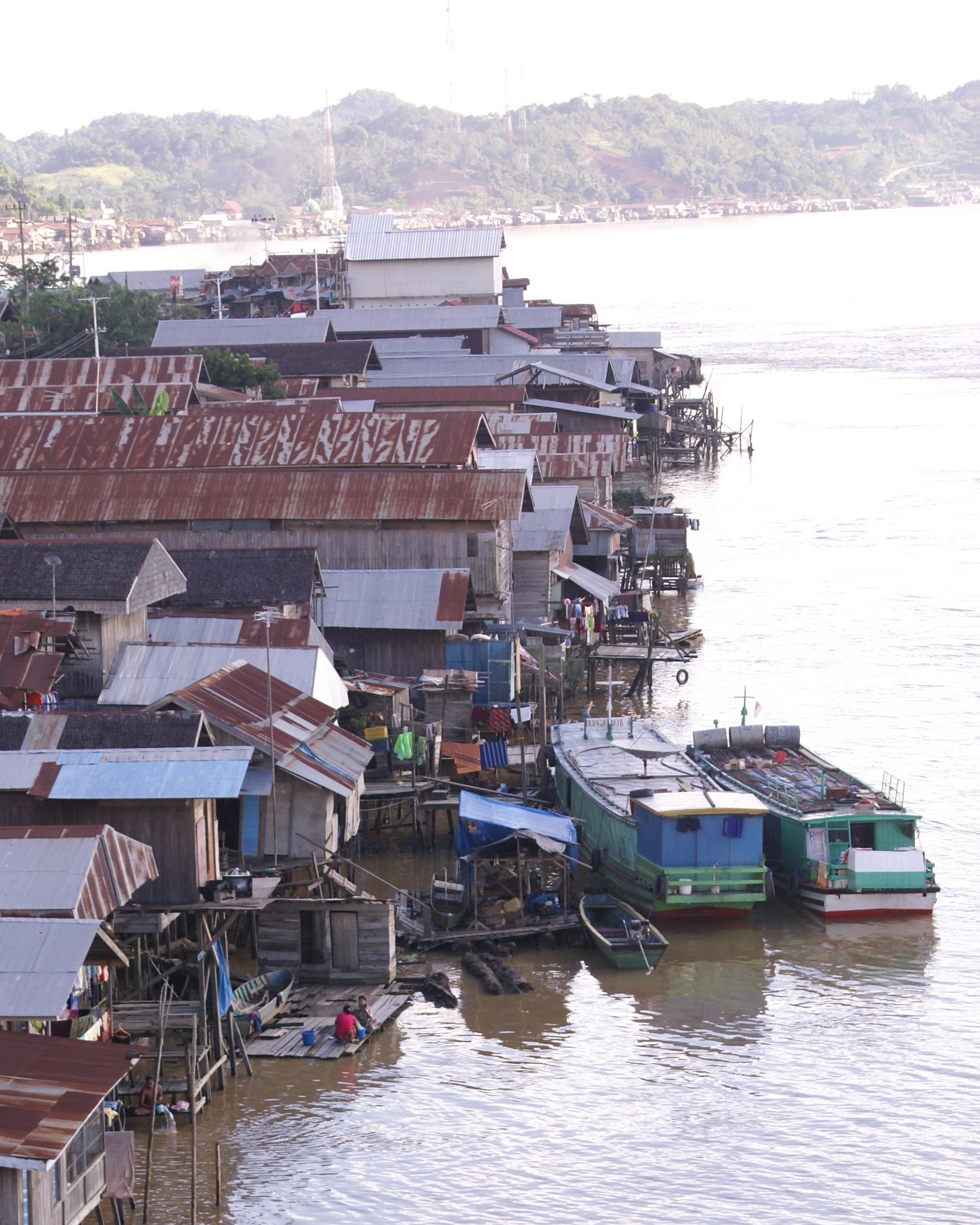 Batang Sungai Mahakam